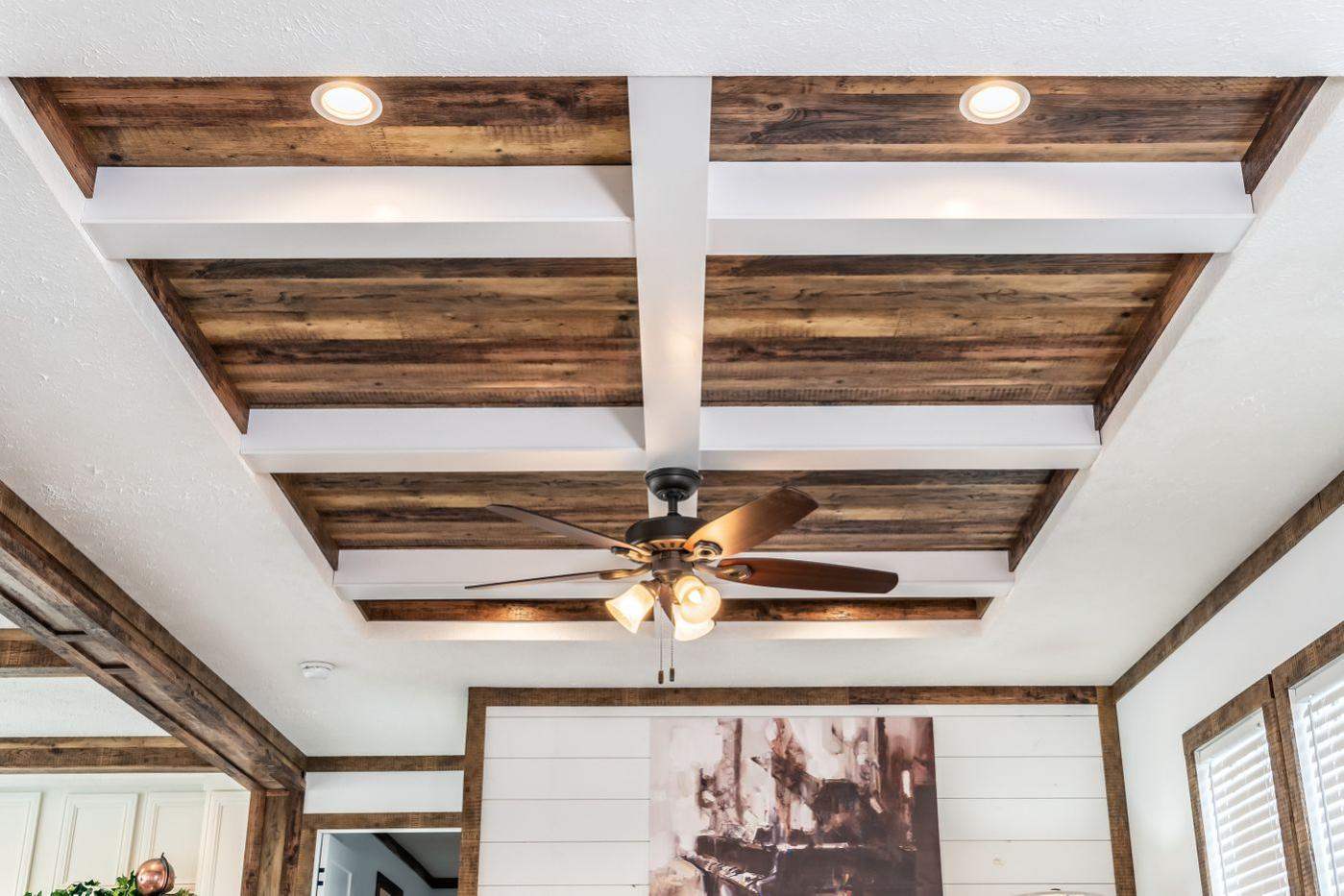 The Avalyn Ceiling